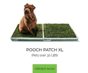 dog pads, puppy pee pads, and pooch potty image