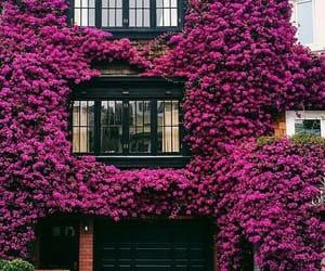 architecture, beautiful, and lifestyle image