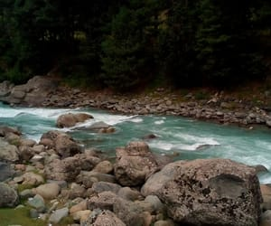 beauty, river, and scenery image