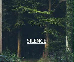 forest, peace, and nature image