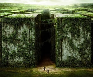 labyrinth and maze runner image