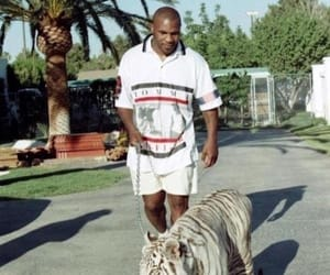 tiger and mike tyson image