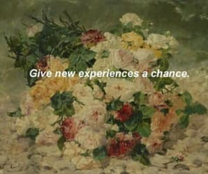 aesthetic, alternative, and chance image