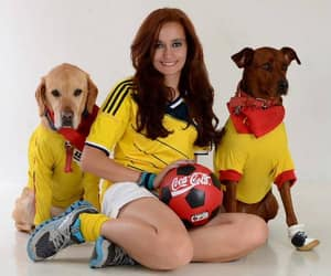 colombia, dogs, and soccer image