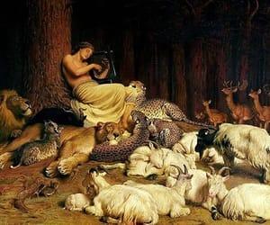 art, animals, and apollo image