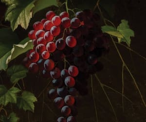 art, painting, and wine image