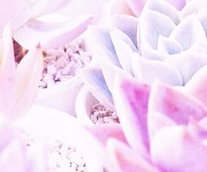 kawaii, tumblr, and pink image