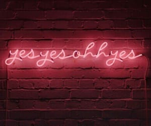 neon, sex, and oh yes image