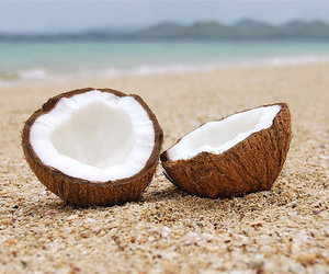 coconut, beach, and summer image