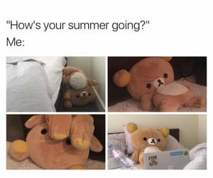 funny, meme, and summer image
