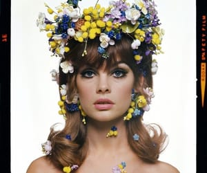 flowers, jean shrimpton, and model image