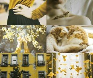 Image by cecilia ❤