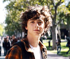 actor, beautiful boy, and gif image