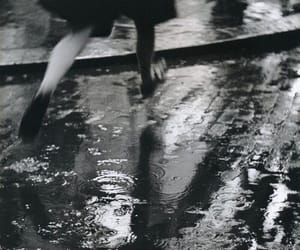 rain and black and white image