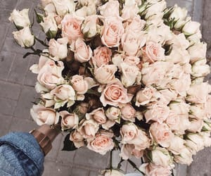 flowers, beauty, and style image