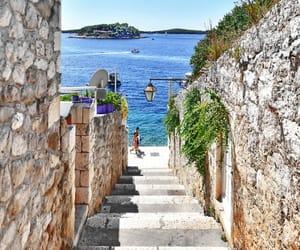 Dalmatia image