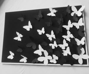 black, butterfly, and decoration image