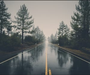 road, rain, and forest image