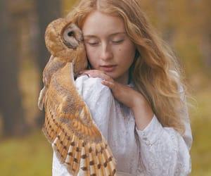 beauty, animal, and wild image