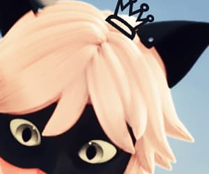 Chat Noir, icon, and miraculous ladybug image