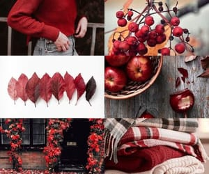 autumn, red, and sweaters image