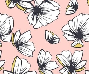 draw, flowers, and wallpapper image