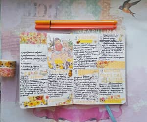 diary, journal, and notebook image