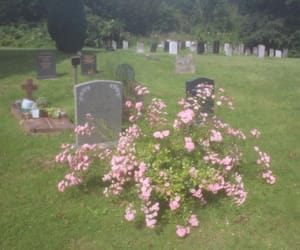 cemetery, flowers, and gravestone image