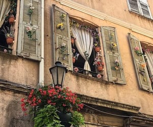 flowers, architecture, and vintage image