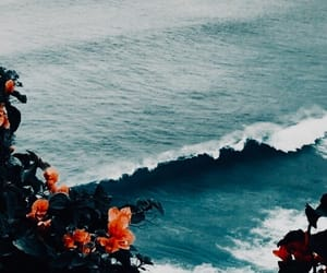 flowers, ocean, and blue image