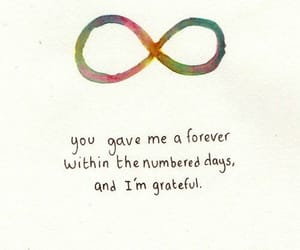 forever, quotes, and the fault in our stars image