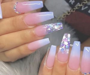 nails and claws image