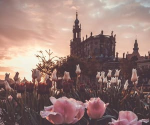 flowers, castle, and pink image