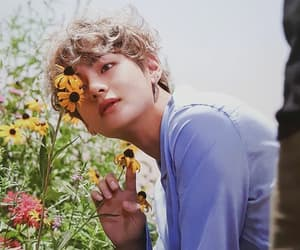 boys, flowers, and handsome image