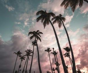 nature, beach, and sky image