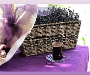coffee, lavender, and fashion image