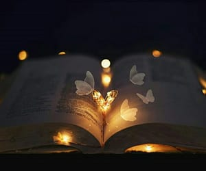 book, light, and photography image