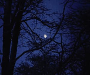 moon, blue, and night image