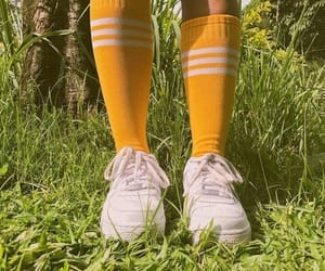 yellow, aesthetic, and socks image