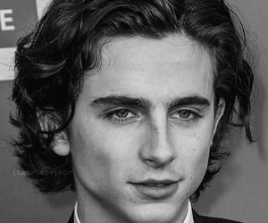 timothee chalamet and cmbyn image