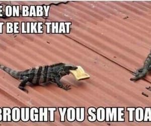 babe, lizard, and toast image