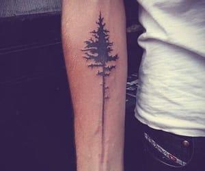 tattoo, tree, and arm image