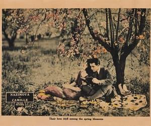 camille, film, and alla nazimova image