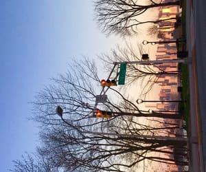 new york, street, and sunset image