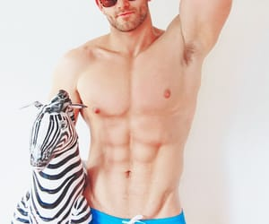 abs, zebra, and blue image