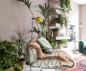 cosy, furniture, and interior image