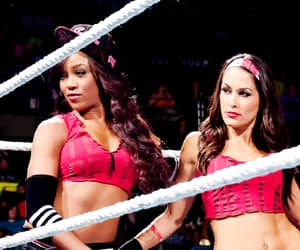 wwe, brie bella, and alicia fox image