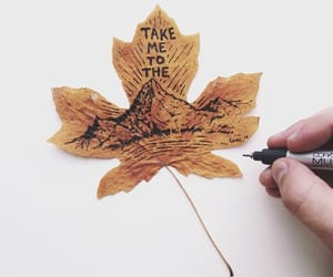 drawing, hand, and leaf image