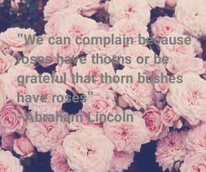 complain, pink, and greatful image