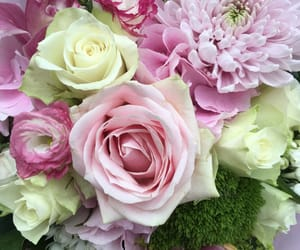 luxe, flowers, and roses image